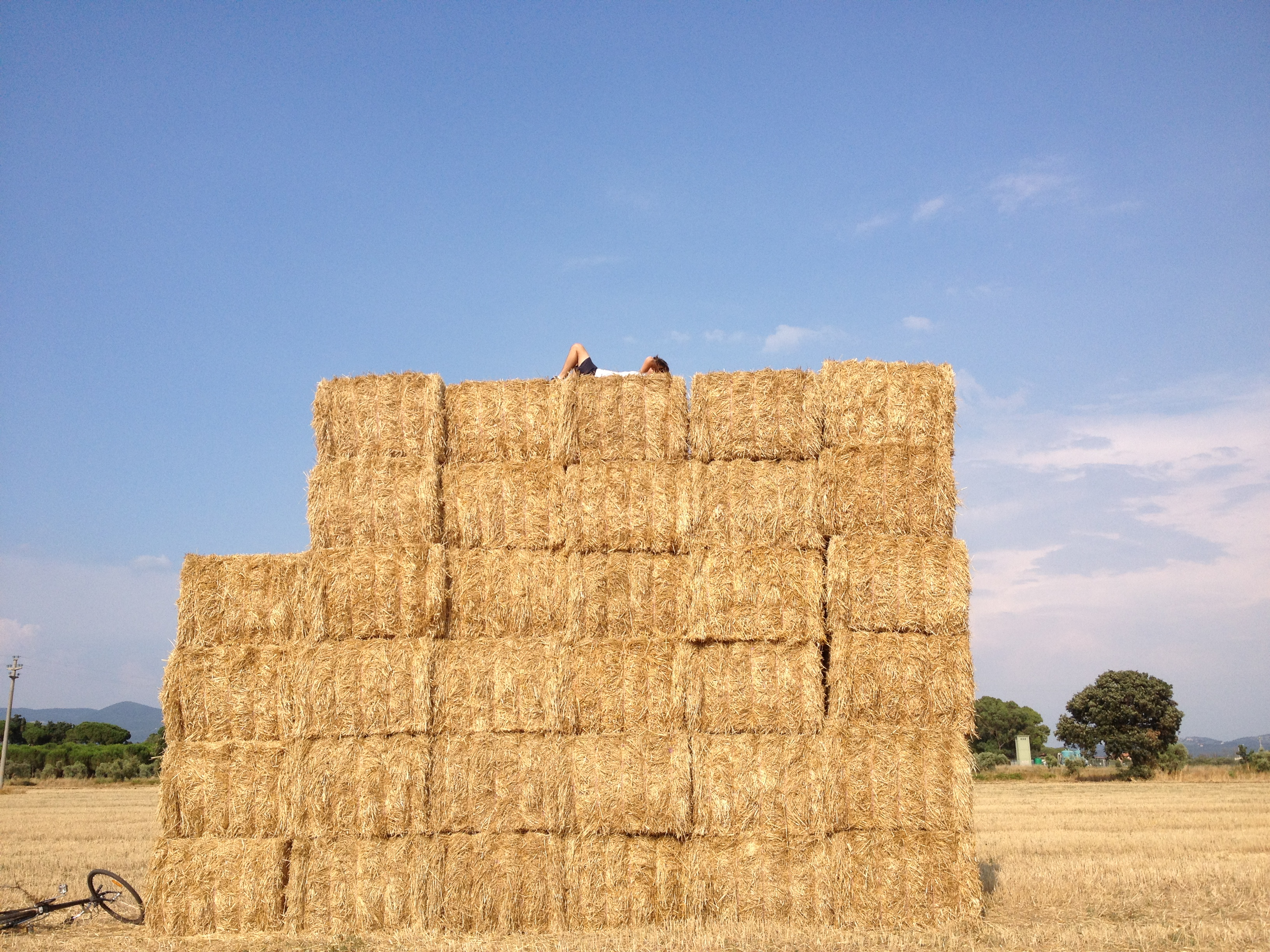 Resting on top of a hay tower.