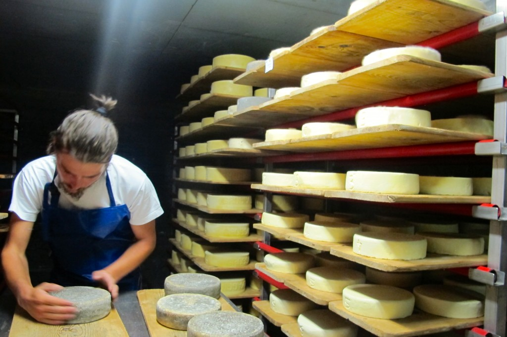 Four days of making cheese in the Swiss Alps.
