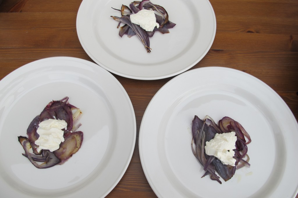 Ricotta and red onion plated.